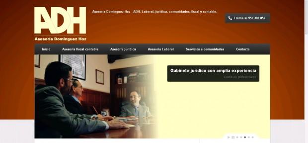 Diseño web para asesoria Dominguez Hoz