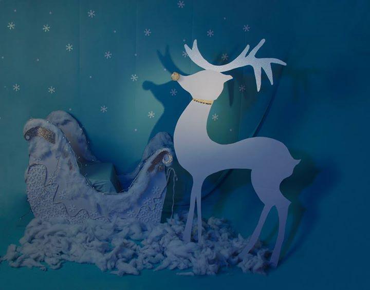 Decoración para las fotografias de navidad 2014